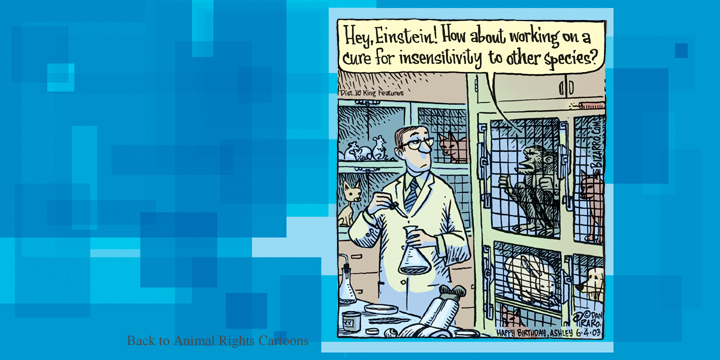 Cartoon of lab chimpanzee questioning scientist