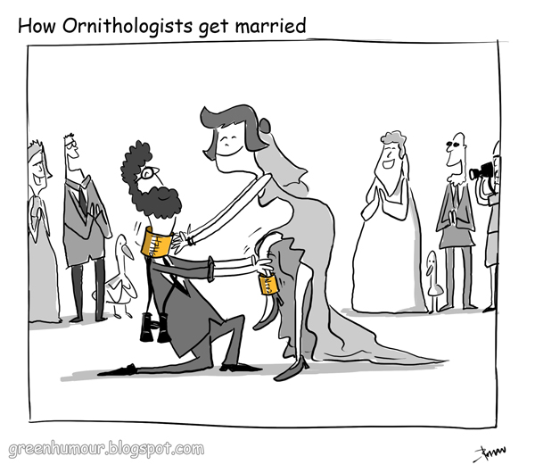Cartoon of bride and groom putting gold bands around neck and leg as if birds.