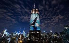 https://news.artnet.com/art-world/empire-state-building-light-show-for-endangered-species-322070