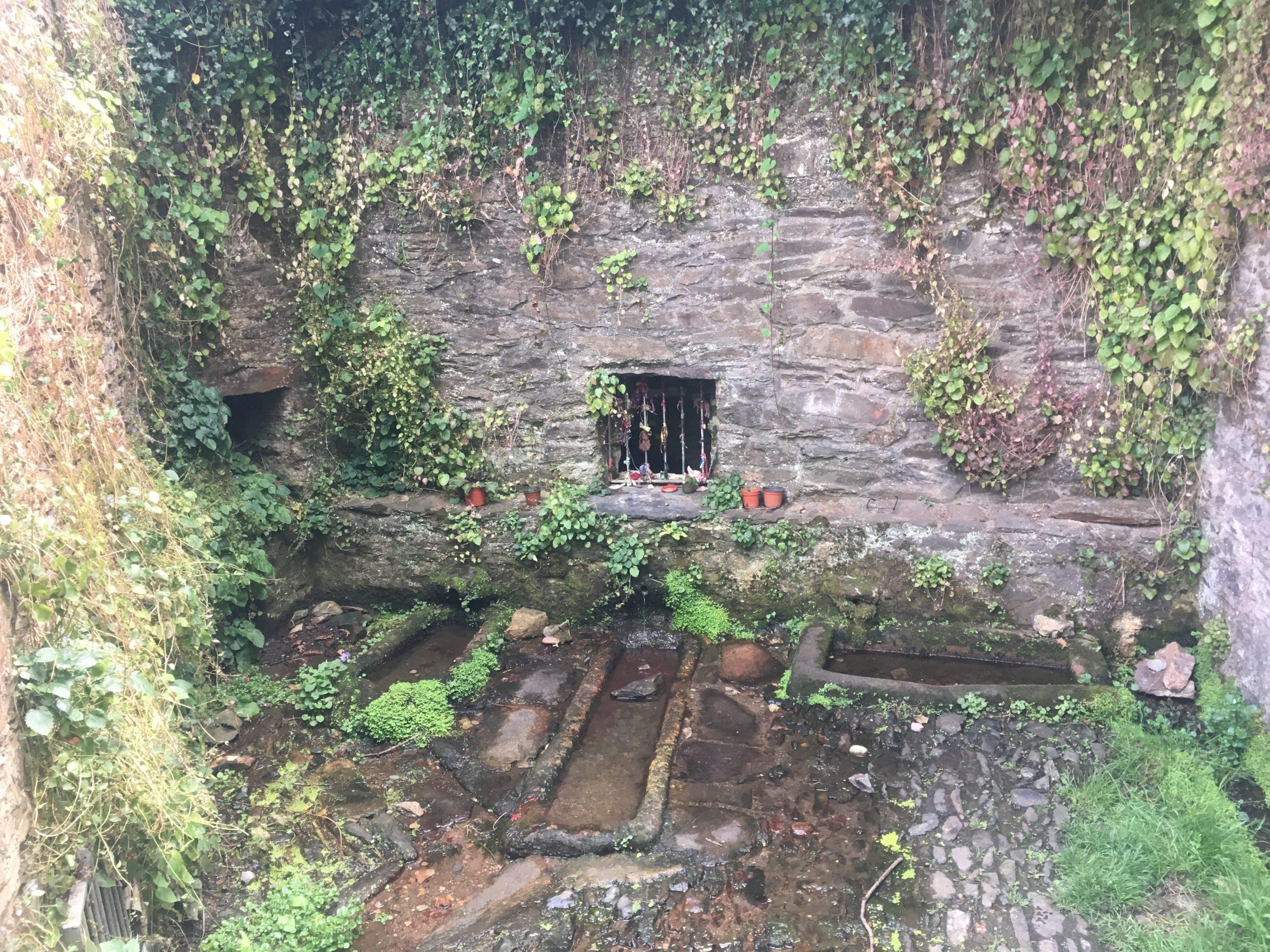 The Leechwell spring, Totnes