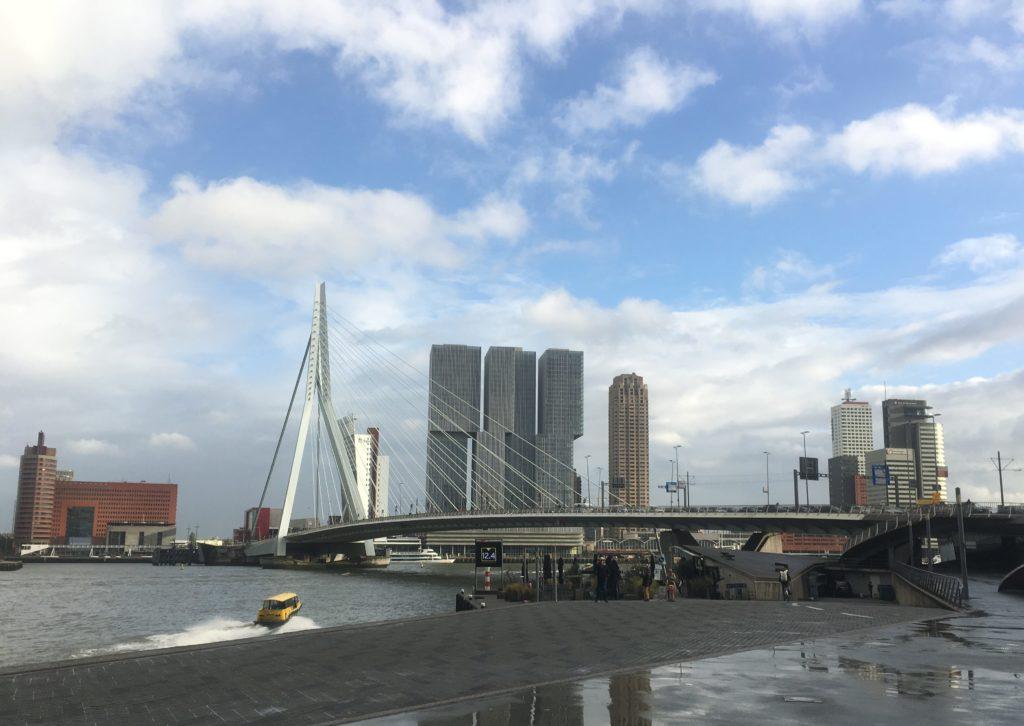 Rotterdam harbour reminds me of Hong Kong