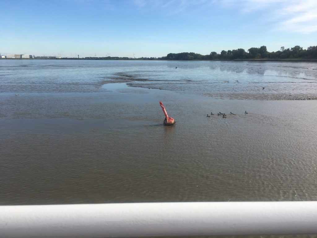 Mudflats showing how tidal the river Elb is