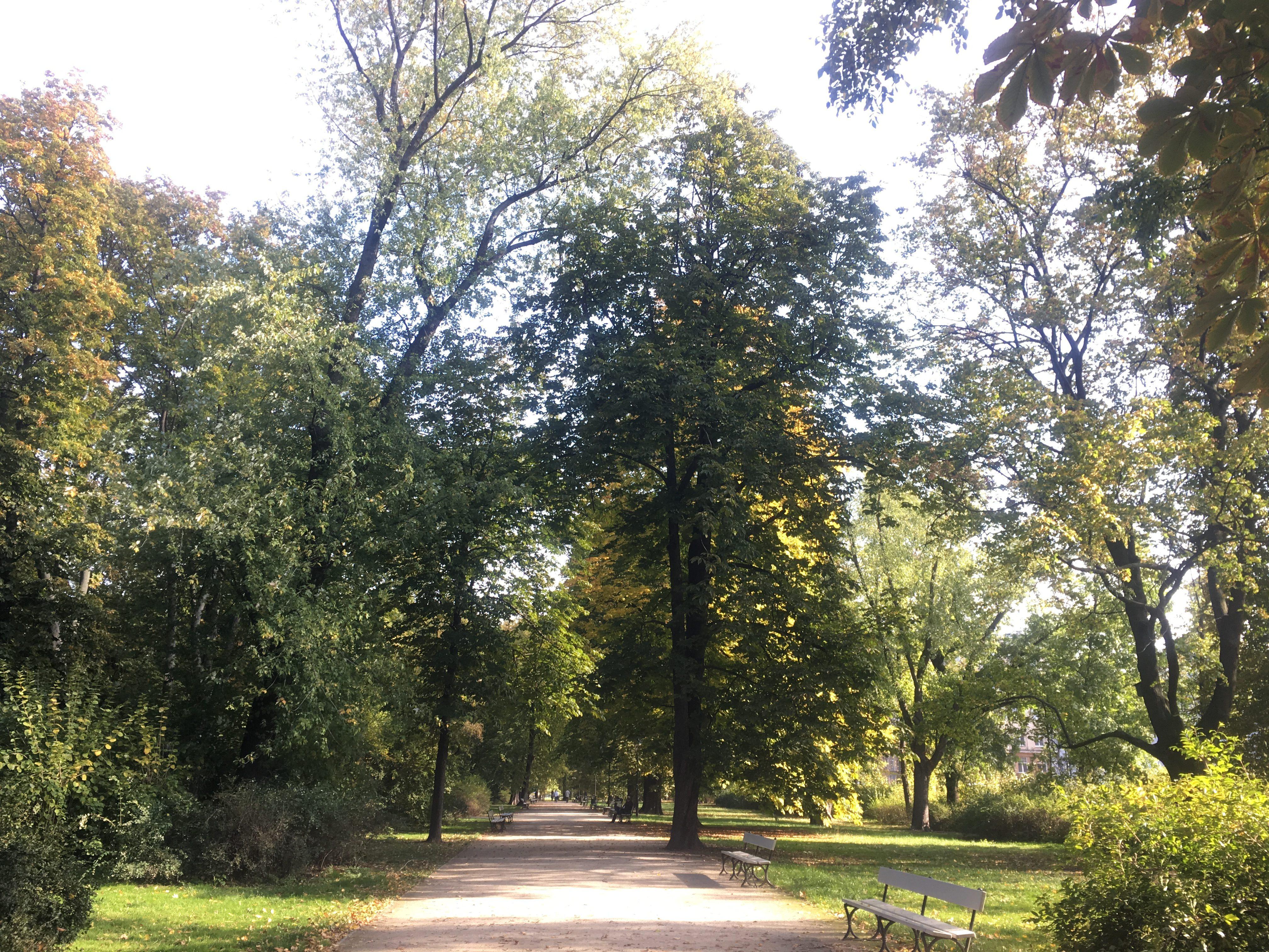 Autumn colour in the Saxony Gardens