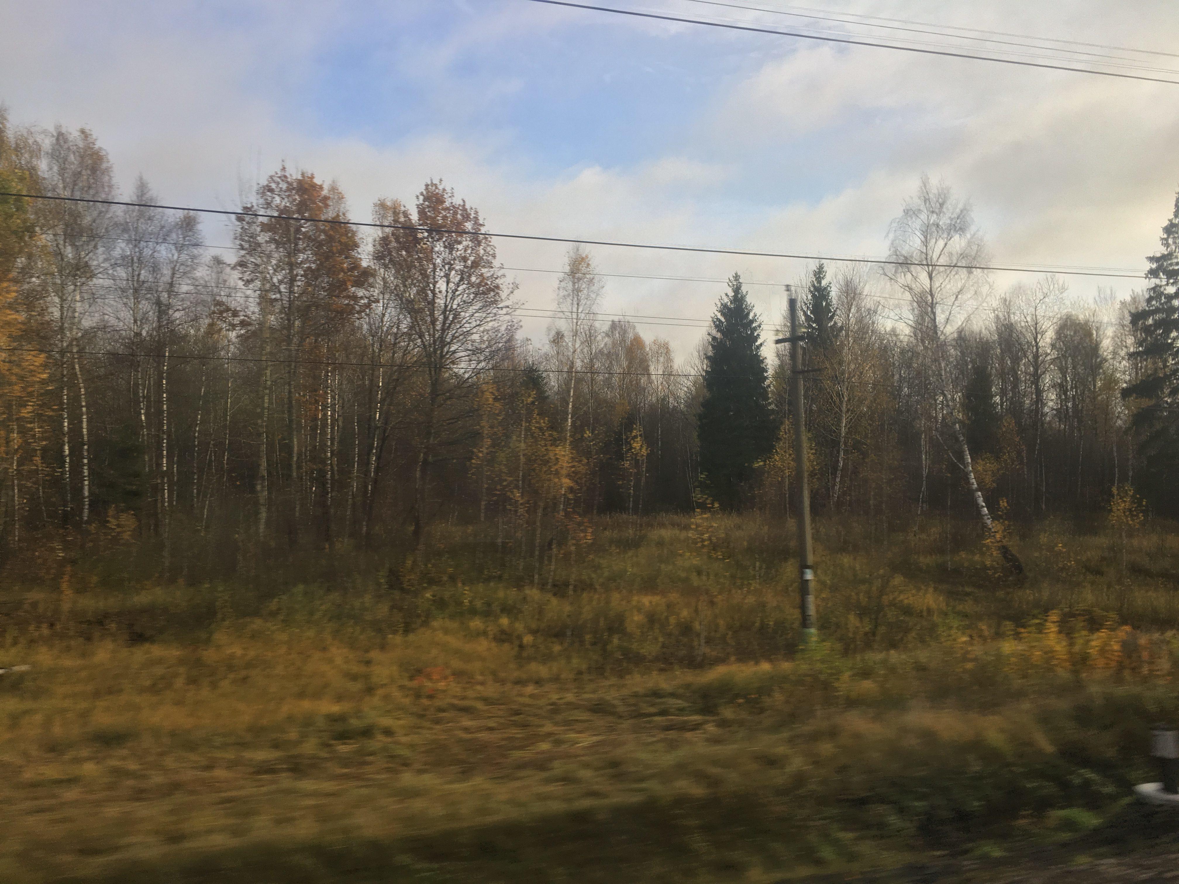 Still a few leaves in Belarus