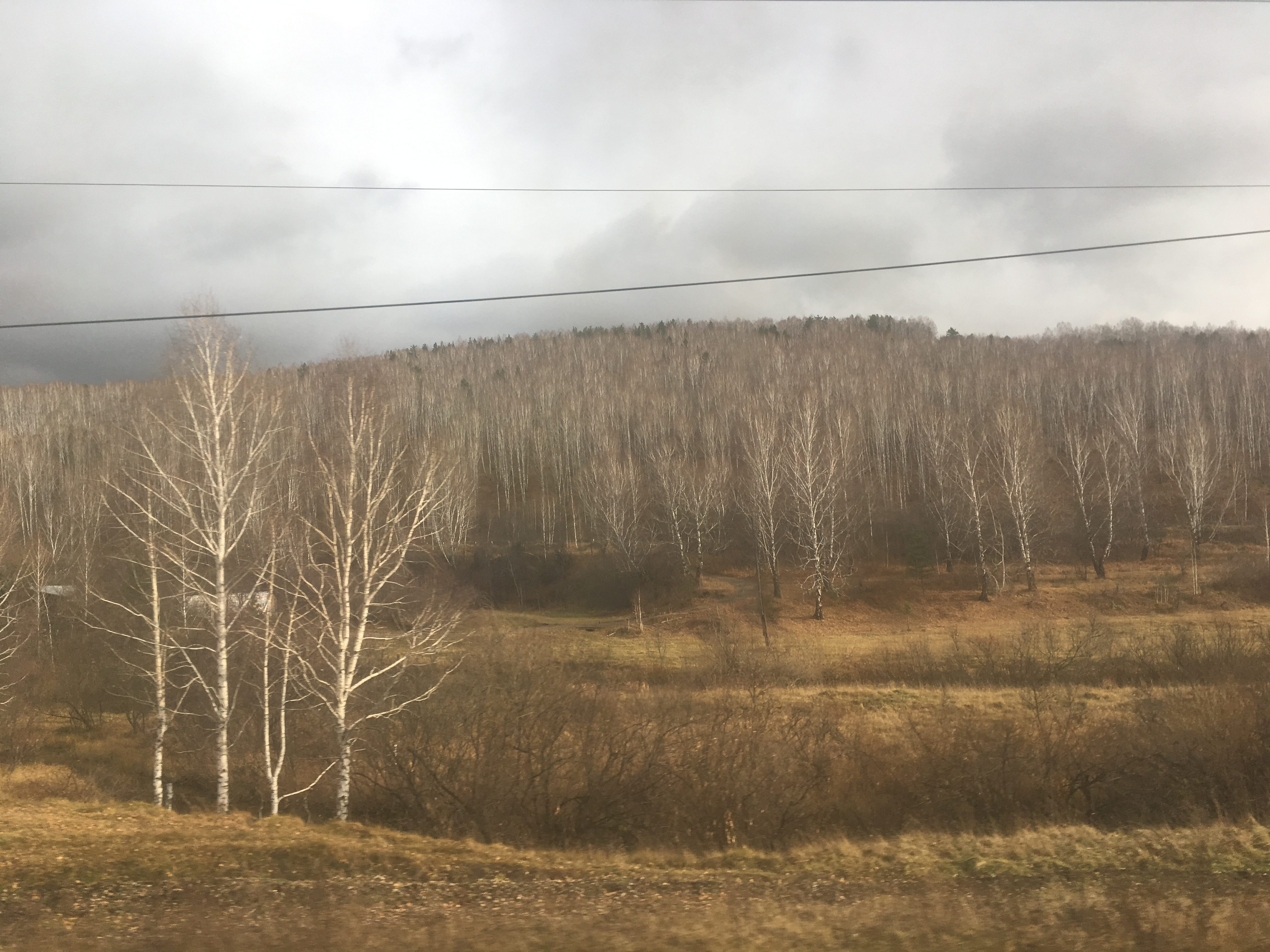 Autumn undulations of Berezovskiy rayon