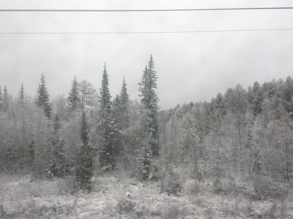 Snow in the Shelekhovskiy rayon