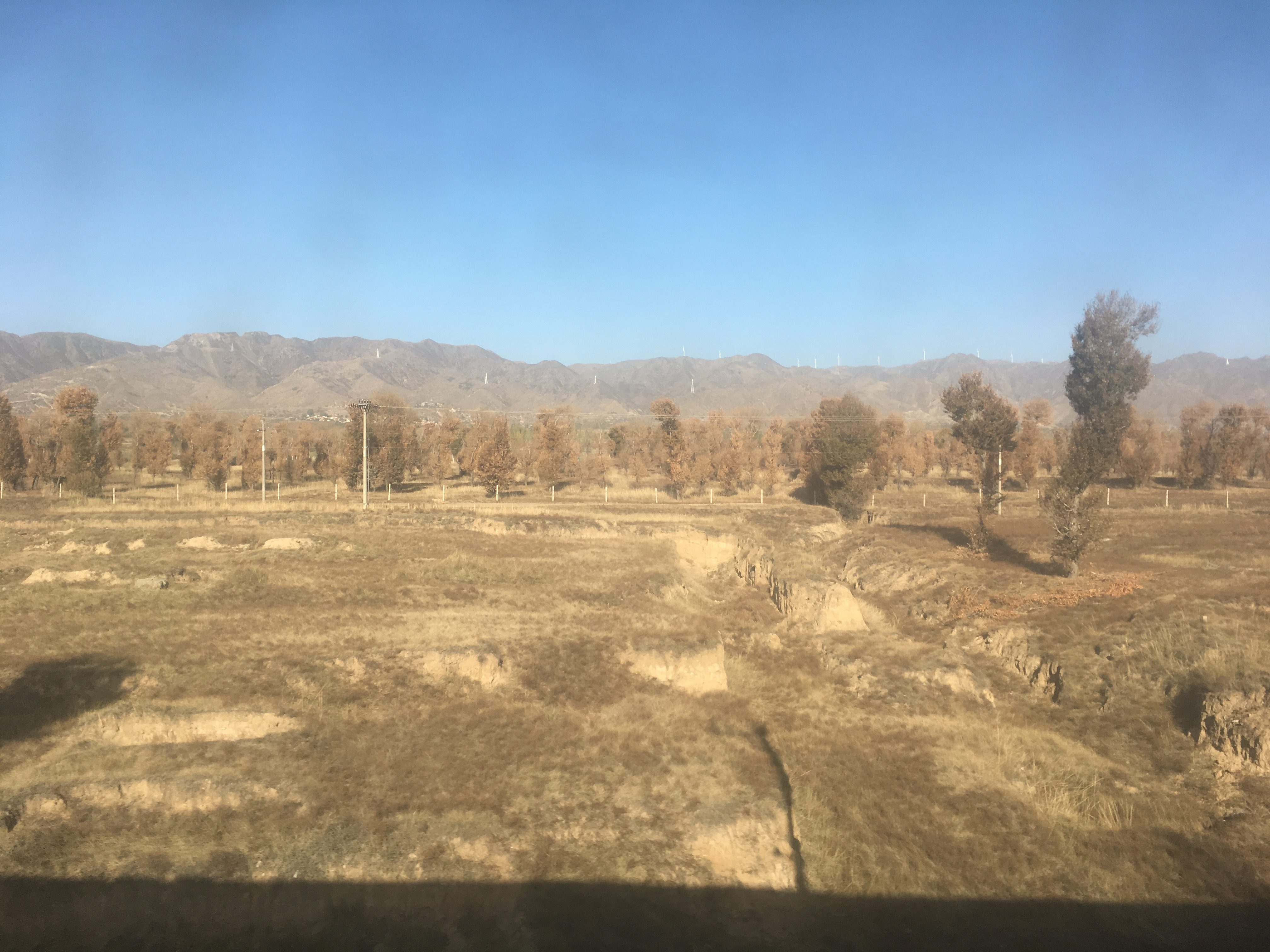 Starting to see planting and wind turbines in rural China