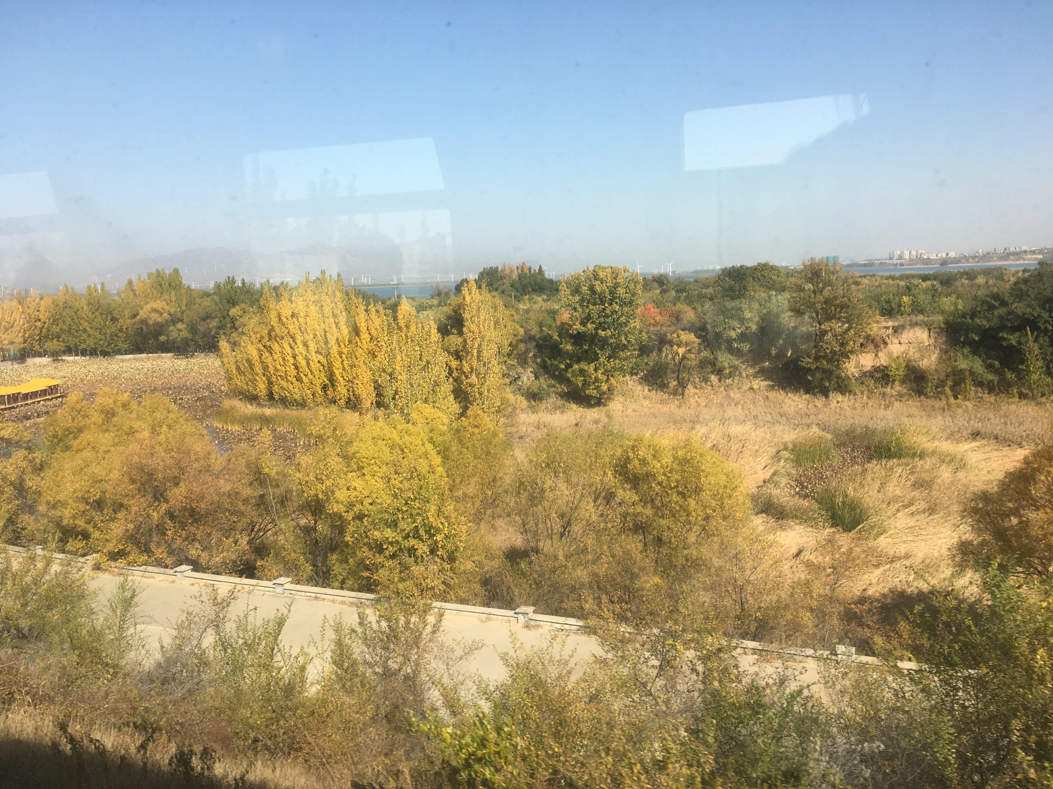 Autumn colour and Beijing city on the horizon