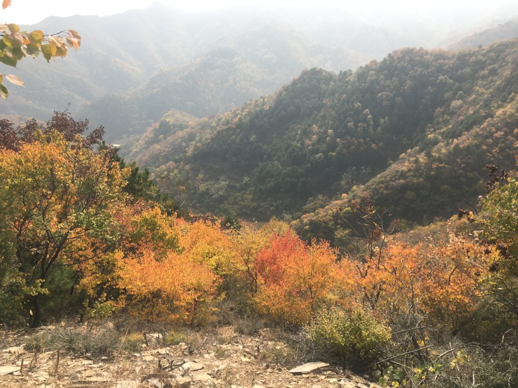 More autumn tones around the Great Wall environs