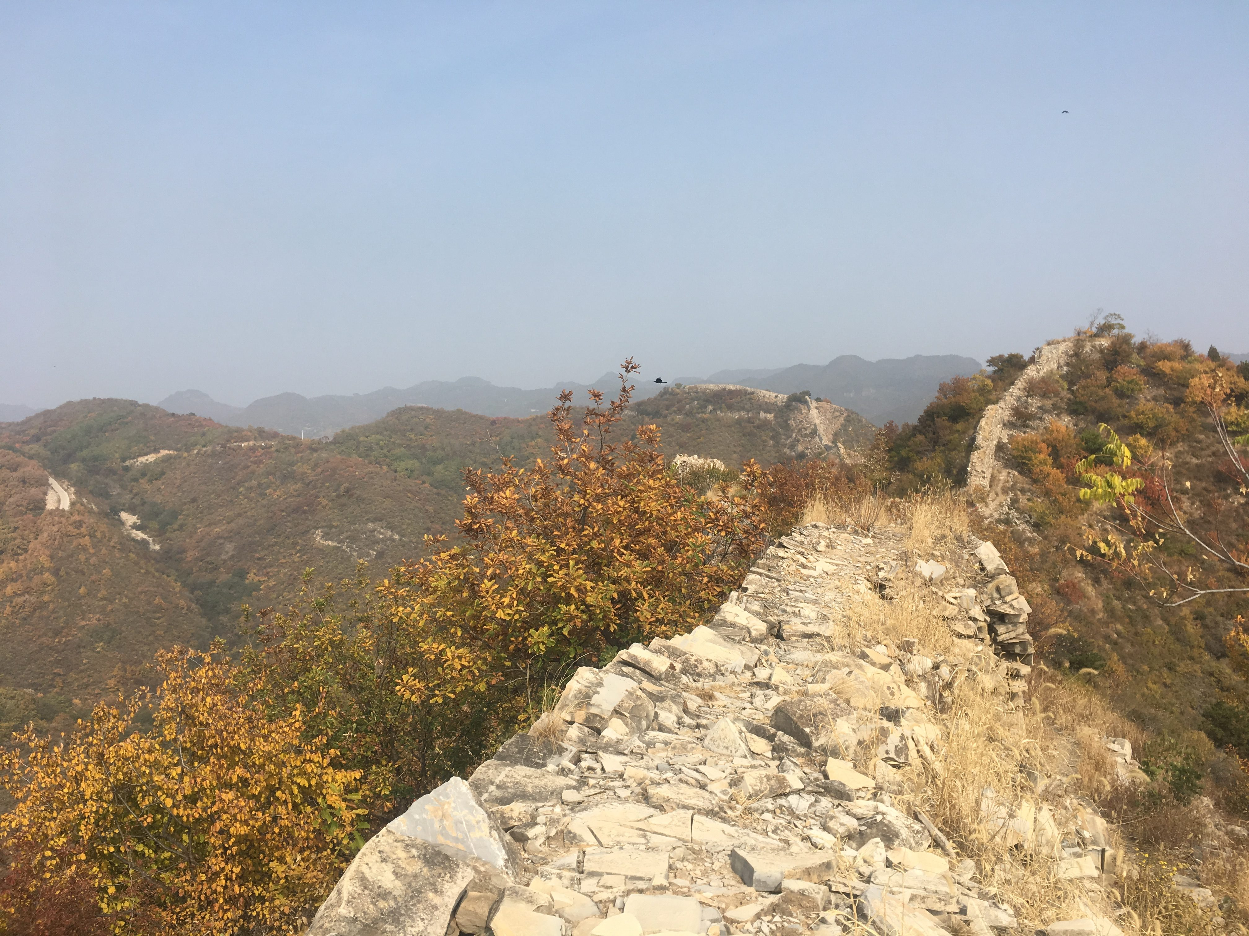 Looking back along the Great Wall track
