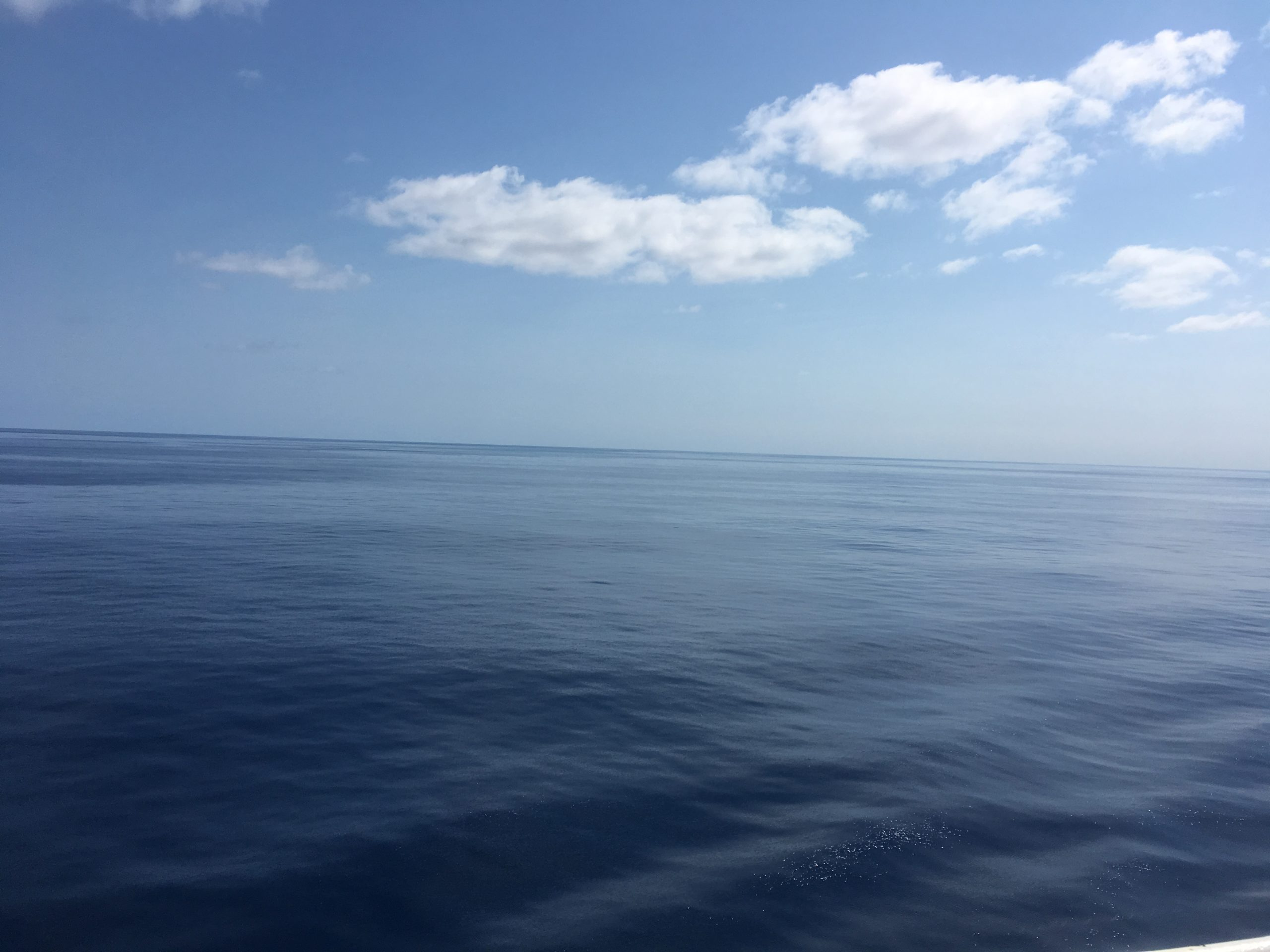 Afternoon calm Coral Sea
