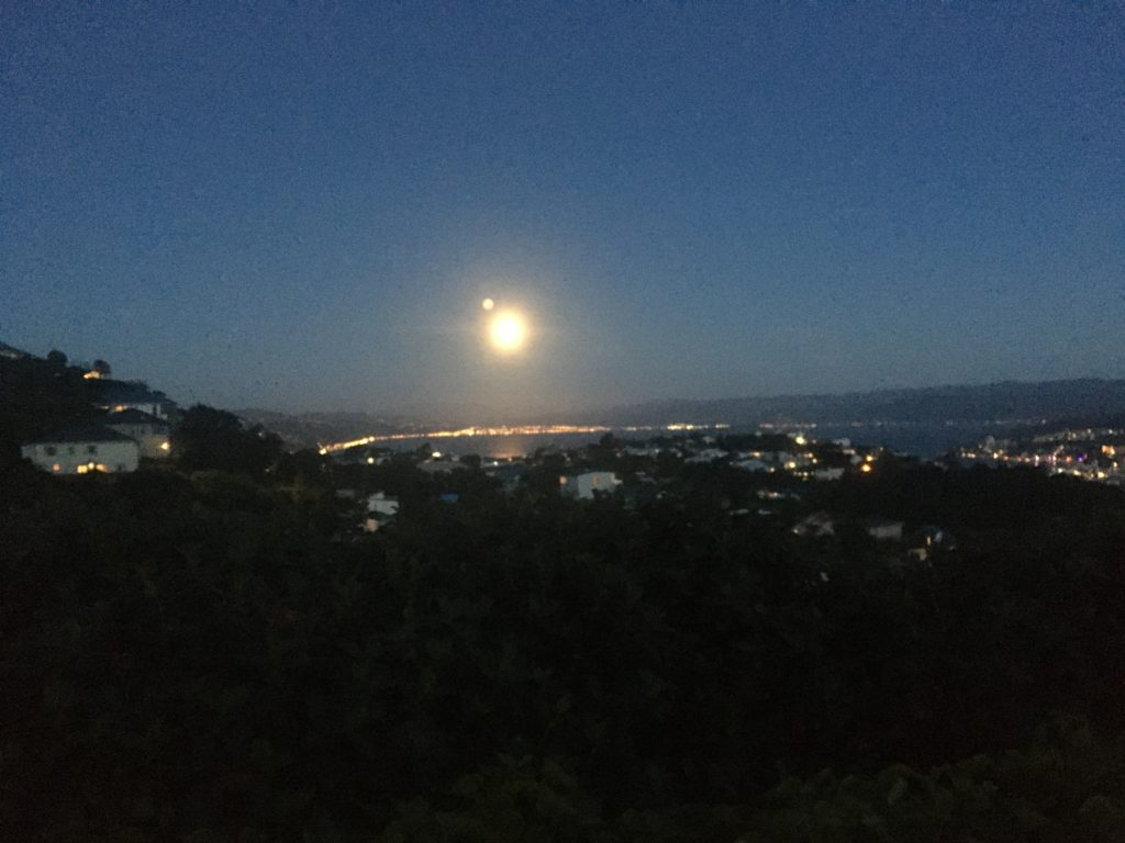 Wellington by the light of the full moon