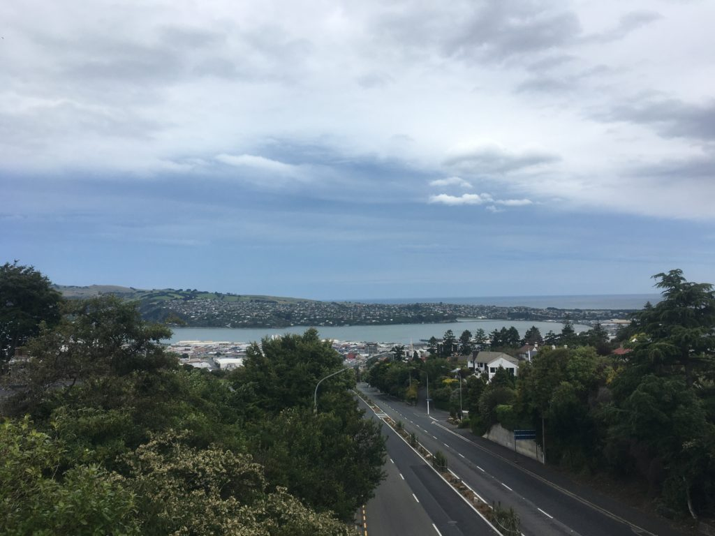 Looking down to Dunedin Harbour from Roslyn