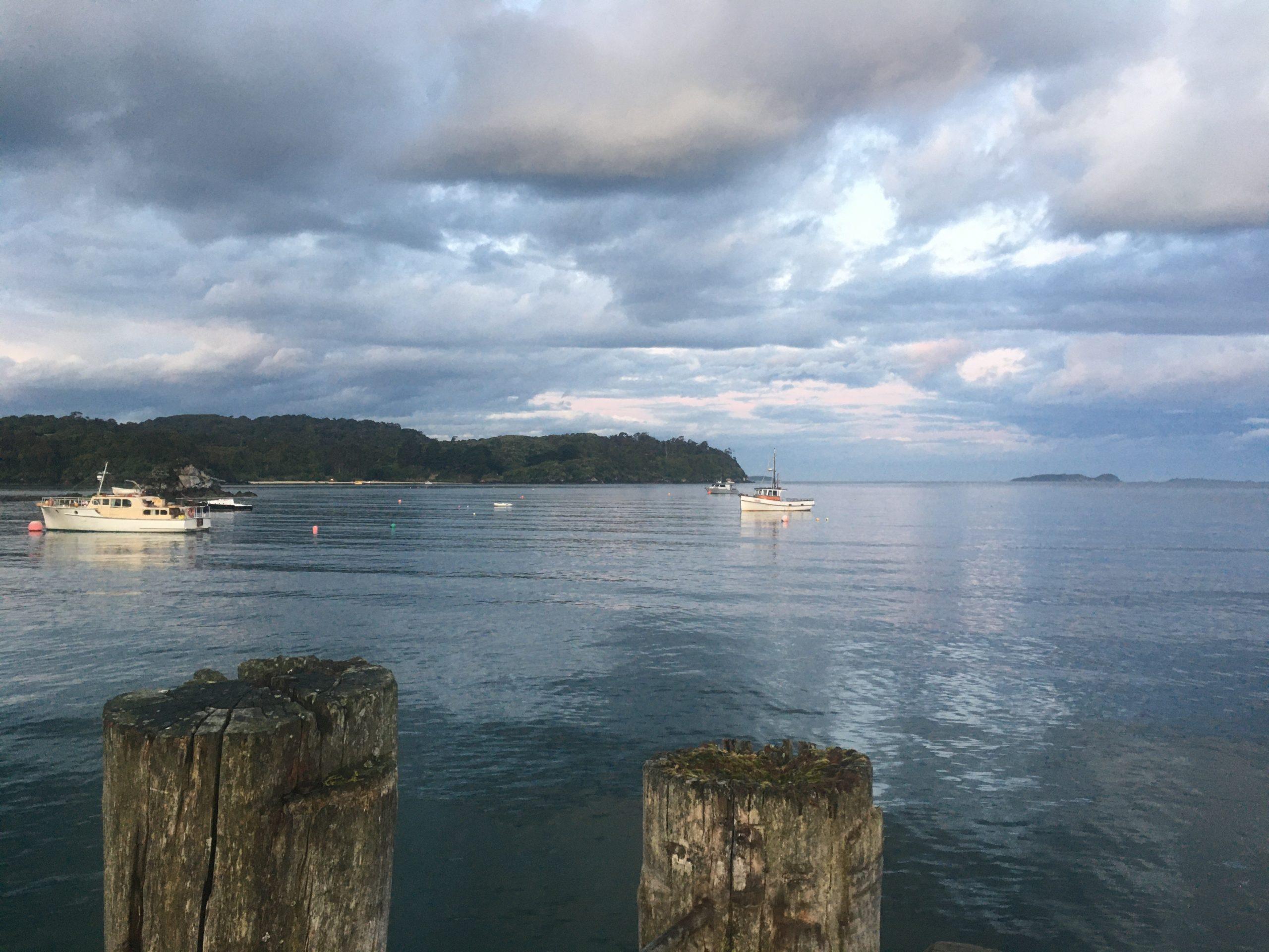 Oban harbour, Stewart Island