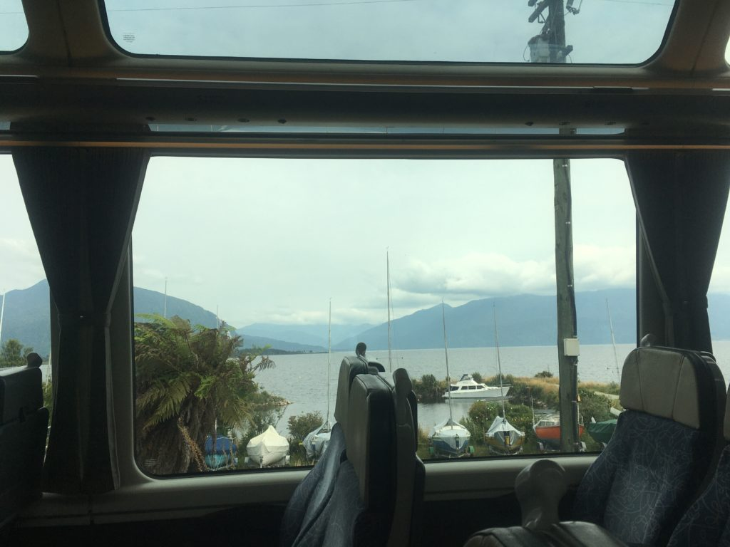 TranzAlpine views