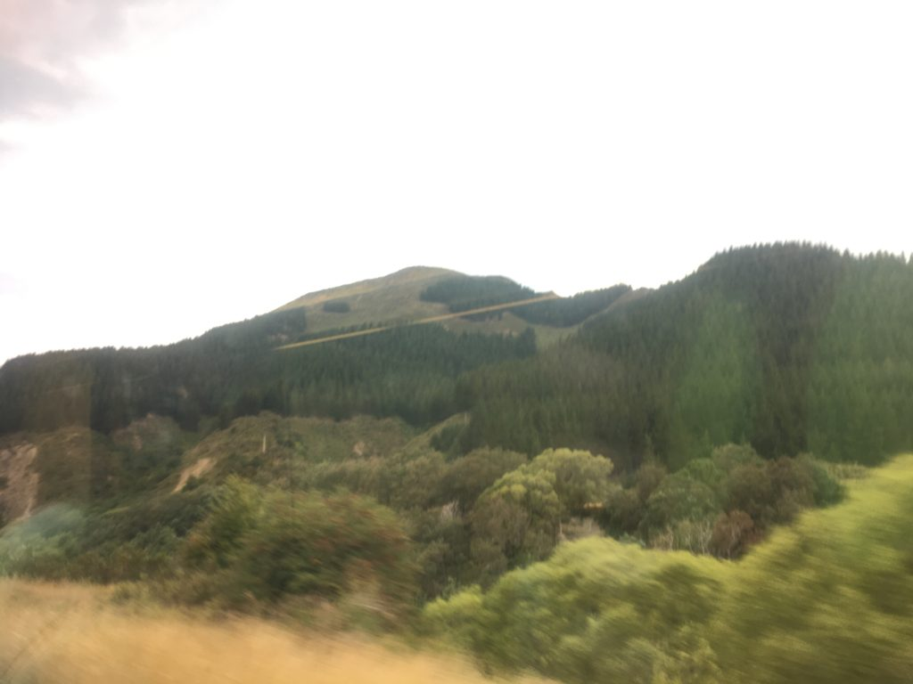 Rolling rural hills between ChCh and Picton