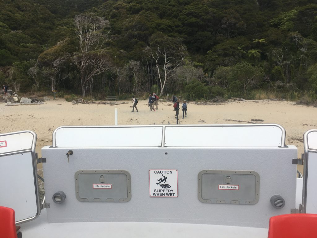 Water taxi probe driving into a beach in Abel Tasman Park