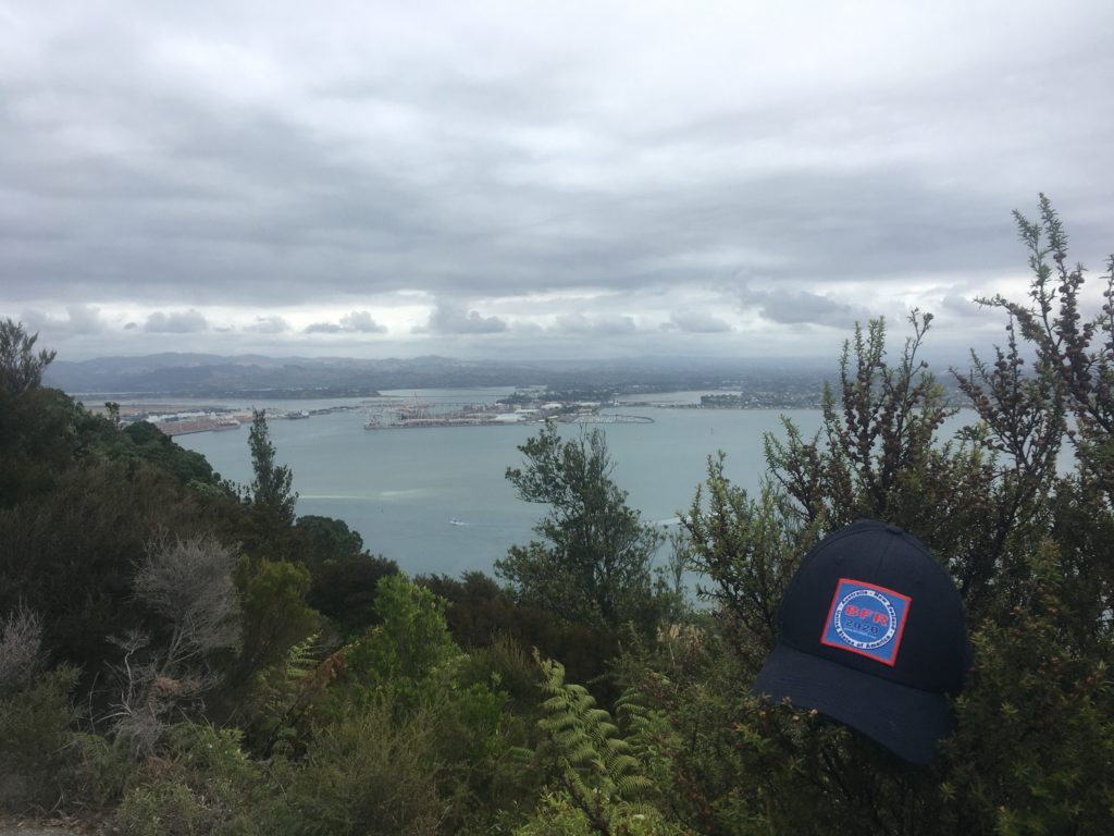 Family reunion hat slung over a bush on Mount Manganui - that's the port in the background