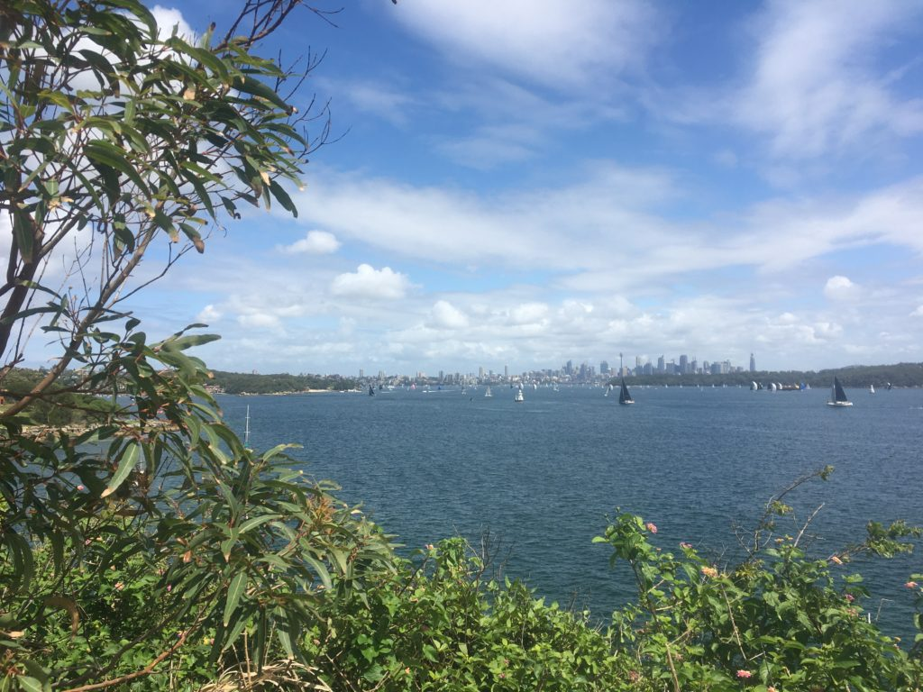 Sydney Harbour from South Head